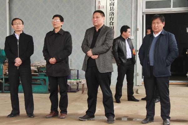 市人大副主任杨长洲在灵口镇调研